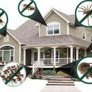 thanh chặn đáy cửa chống mọi loại côn trùng